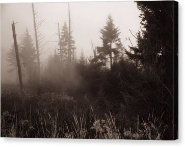 Morning Fog In The Smoky Mountains Canvas Print by Dan Sproul