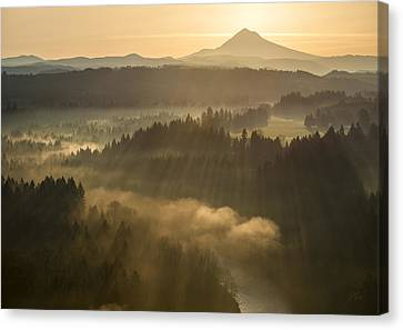Morning Has Broken Canvas Print by Lori Grimmett