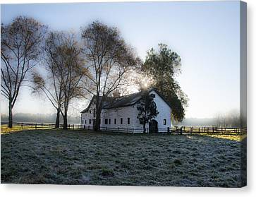 Morning In Whitemarsh - Widener Farms Canvas Print by Bill Cannon