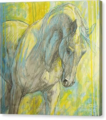 Morning Light Canvas Print by Silvana Gabudean