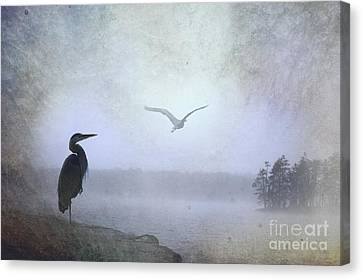 Morning Mist Along The Masagee Canvas Print by The Stone Age