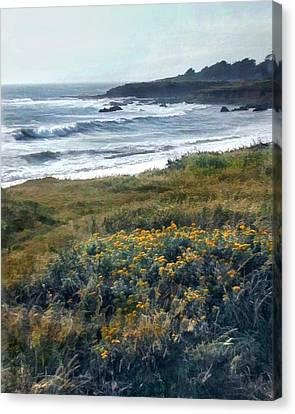 Morning Mist At Ocean Shoreline Canvas Print by Elaine Plesser