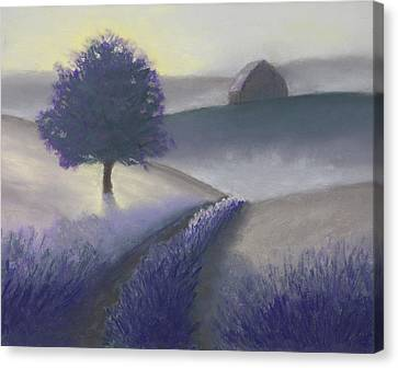 Morning Mist Canvas Print by Garry McMichael