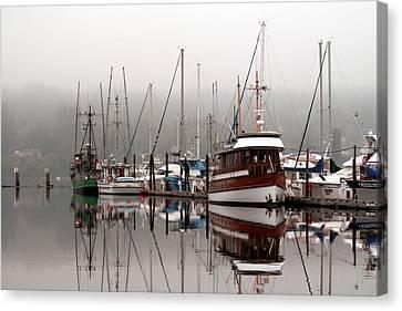 Morning Mist Canvas Print by John Bushnell