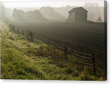 Morning Mist Over Field And Canvas Print by Jim Craigmyle