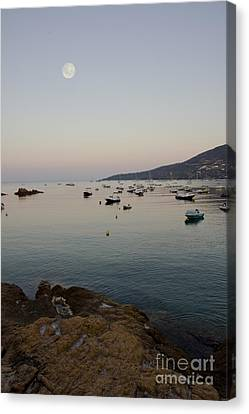 Morning Moon Canvas Print by Sophie De Roumanie