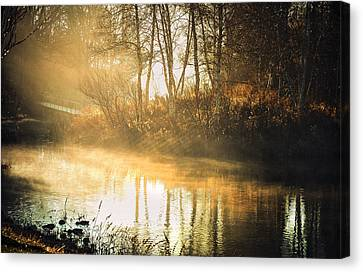 Morning Rays Canvas Print by Julie Palencia