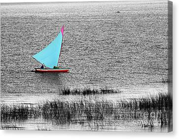 Morning Sail Canvas Print by James Brunker