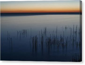 Morning Canvas Print by Scott Norris