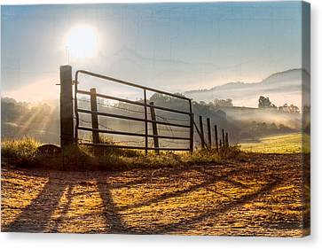 Morning Shadows Canvas Print by Debra and Dave Vanderlaan