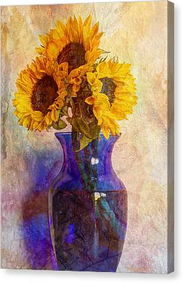 Morning Sunshine Canvas Print by Heidi Smith