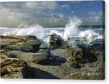 Morning Tide In La Jolla Canvas Print by Sandra Bronstein