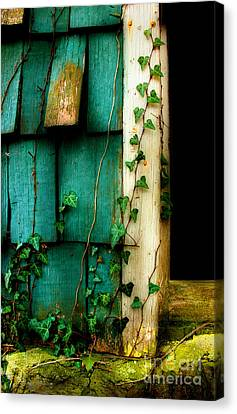 Morning Time Memories Canvas Print by Michael Eingle