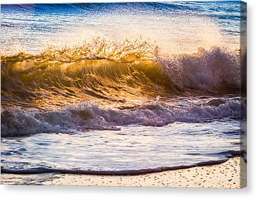 Morning Wave Canvas Print by Rob Travis
