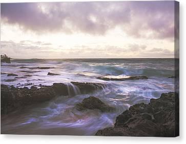 Morning Waves Canvas Print by Brian Harig