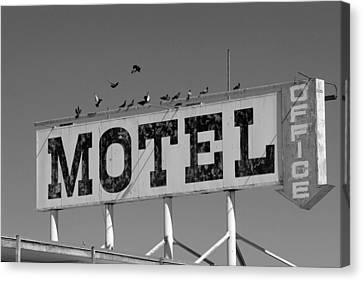 Motel For The Birds Canvas Print by Peter Tellone