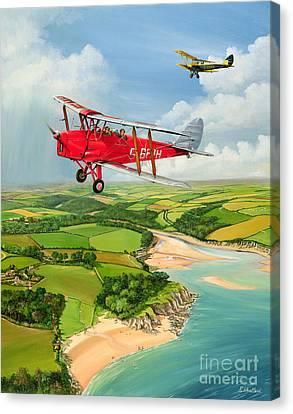 Mothecombe Moths Canvas Print by Richard Wheatland