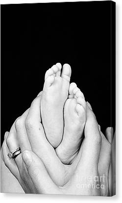 Mother And Son Hands And Feet Canvas Print by Jane Rix