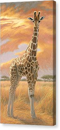 Mother Giraffe Canvas Print by Lucie Bilodeau