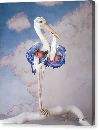 Mother Stork Canvas Print by Anne Geddes