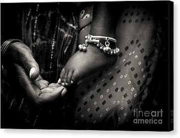 Mothers Love Canvas Print by Tim Gainey