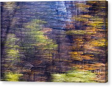 Motion Series - 76 Canvas Print by Paul W Faust -  Impressions of Light