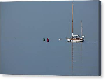 Motoring Sail Canvas Print by Karol Livote