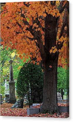 Mount Auburn Cemetery - Cambridge - Massachusetts Canvas Print by Juergen Roth