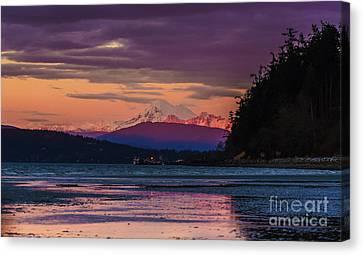 Mount Baker Tideflats Sunset Alpenglow Reflection Canvas Print by Mike Reid