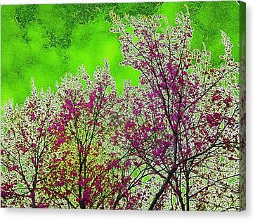 Mount Fuji In Bloom Canvas Print by Pepita Selles