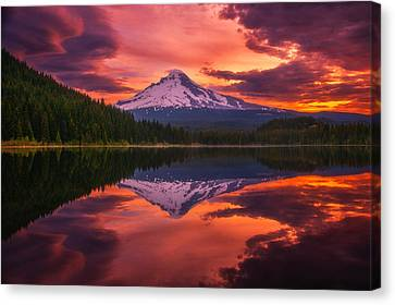 Mount Hood Sunrise Canvas Print by Darren  White