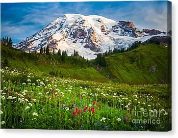 Mount Rainier Flower Meadow Canvas Print by Inge Johnsson