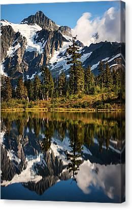 Mount Shuksan Reflections Canvas Print by Alexis Birkill