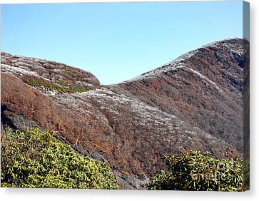 Mountain Frost Canvas Print by Skip Willits