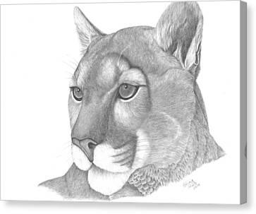 Mountain Lion Canvas Print by Patricia Hiltz