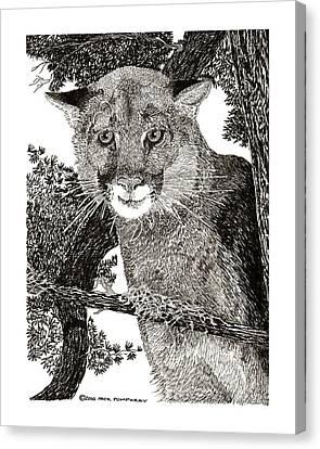 Mountain Lion Puma Canvas Print by Jack Pumphrey