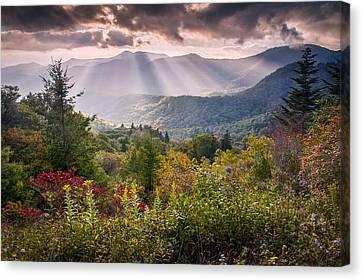 Mountain Majesty Canvas Print by Rob Travis