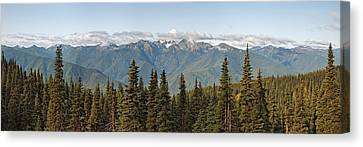 Mountain Range, Olympic Mountains Canvas Print by Panoramic Images