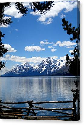 Mountain Reflection On Jenny Lake Canvas Print by Dan Sproul