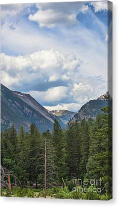 Mountain View Canvas Print by Kay Pickens