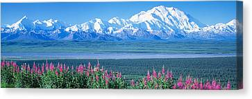 Mountains & Lake Denali National Park Canvas Print by Panoramic Images