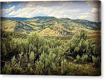 Mountains North Of The Lamar Canvas Print by Marty Koch