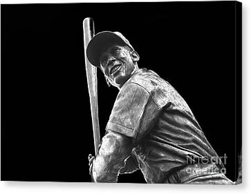 Mr. Cub Canvas Print by David Bearden