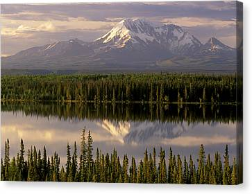Mt Drum Over Willow Lake Wrangell-st Canvas Print by Calvin Hall