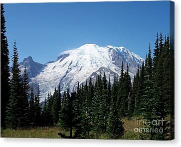 Mt. Rainier In August Canvas Print by Chalet Roome-Rigdon