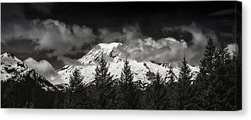 Mt Rainier Panorama B W Canvas Print by Steve Gadomski