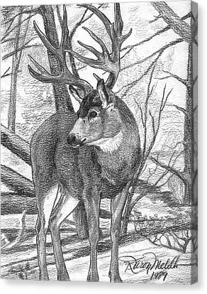 Mule Deer Buck Canvas Print by Karon Melillo DeVega