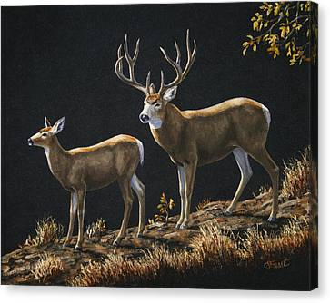 Mule Deer Ridge Canvas Print by Crista Forest