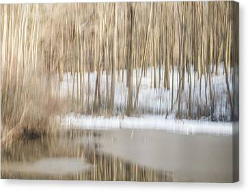 Multiple-exposure Of Trees In Winter Canvas Print by Rona Schwarz
