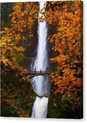 Multnomah Falls Color Canvas Print by Darren  White